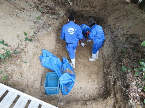 #16 アフの骨を発掘